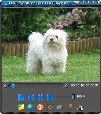 FlvPlayer4Free 5.4.0.0